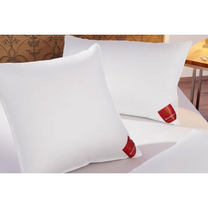 Down Surround Pillow by Brinkhaus